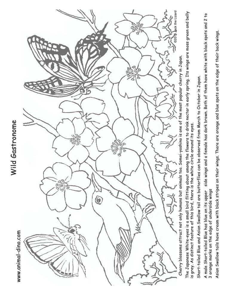 japaese tree coloring pages - photo#21