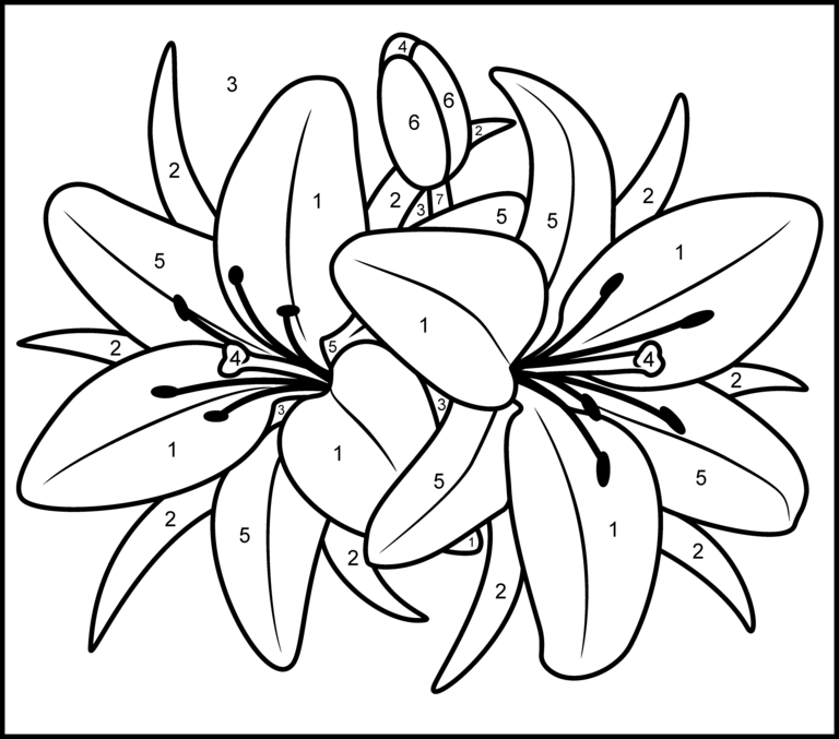 Free printable paint by numbers for adults az coloring pages for Printable color by number pages