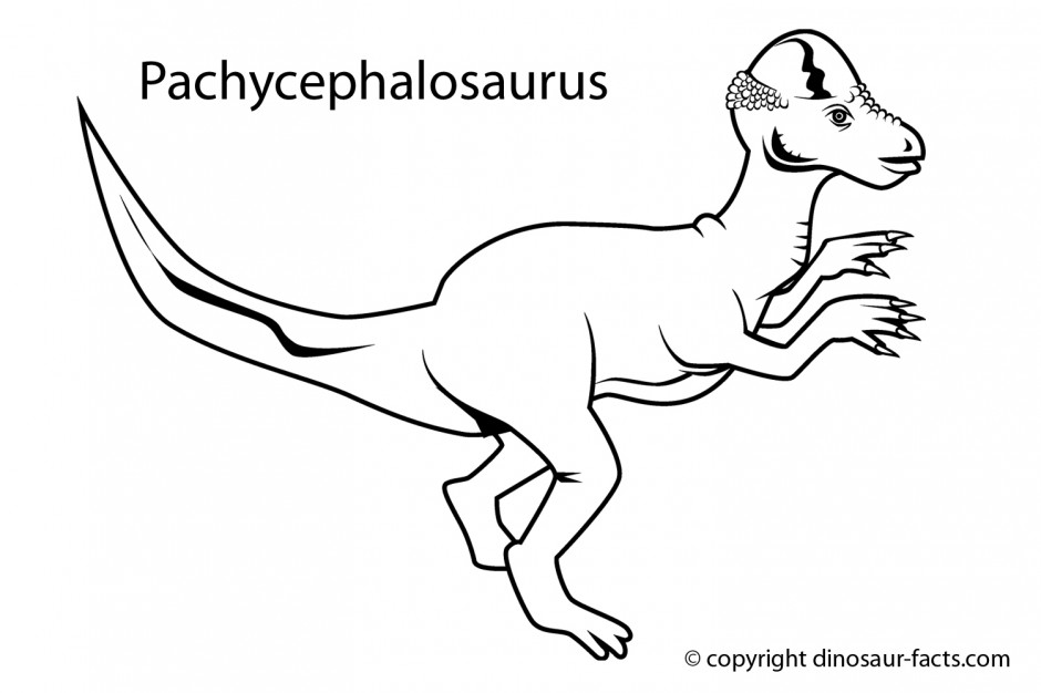 brontosaurus coloring pages - photo#17