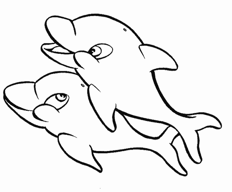 Baby Dolphin Coloring Pages Clipart Panda Free Images