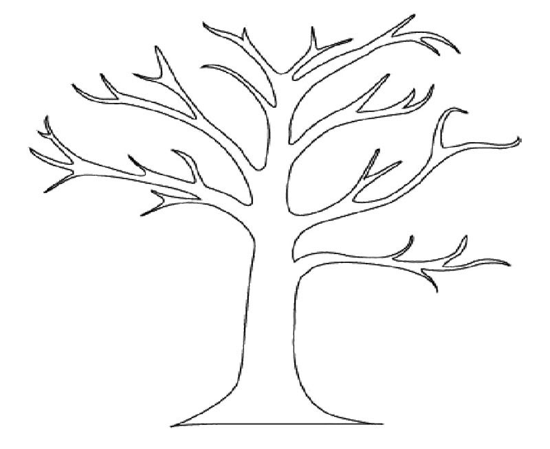 Tree Branches Printable Coloring Pages Tree Coloring Pages Printable