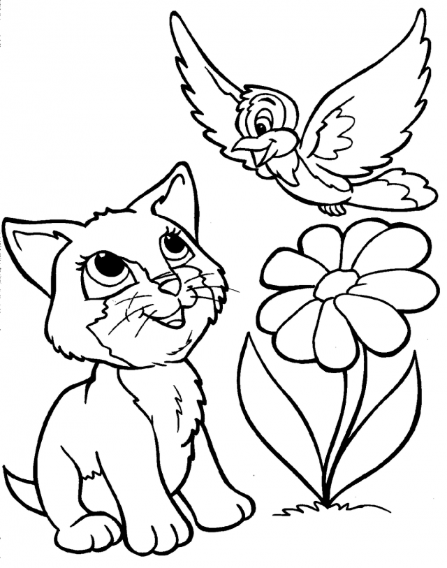 Funny Animal Coloring Pages Coloring Book Area Best Source For