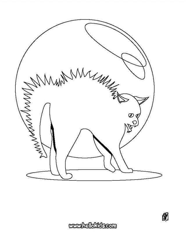 halloween black cat free fun activities for kids tabby cat 248432 az coloring pages
