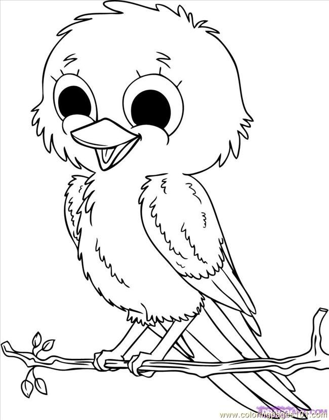 Coloring Pages How To Draw Baby Birds Step 8 Animals How To Draw Coloring Pages