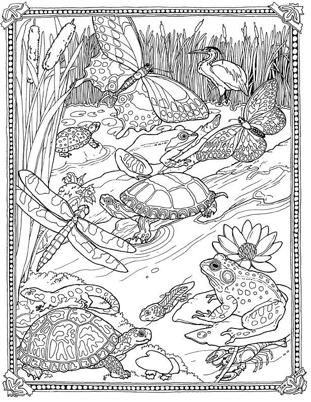 jan brett holiday coloring pages - photo#27