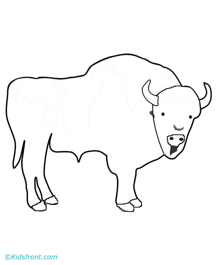 buffalo coloring pages - photo#25