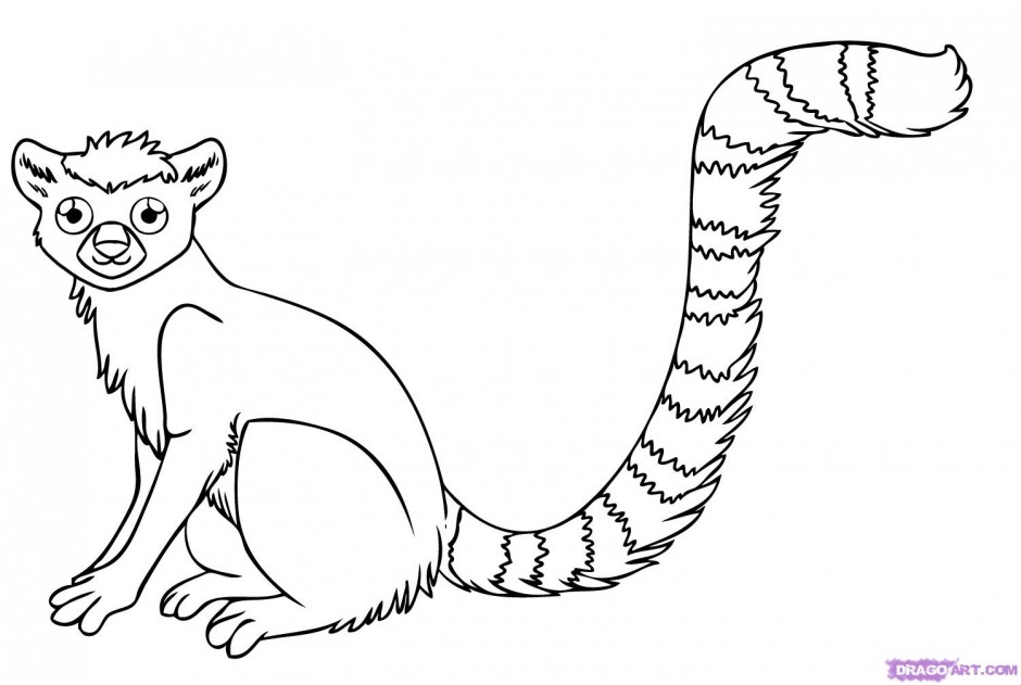 Coloring Pages Tropical Animals : Rainforest animals coloring pages az