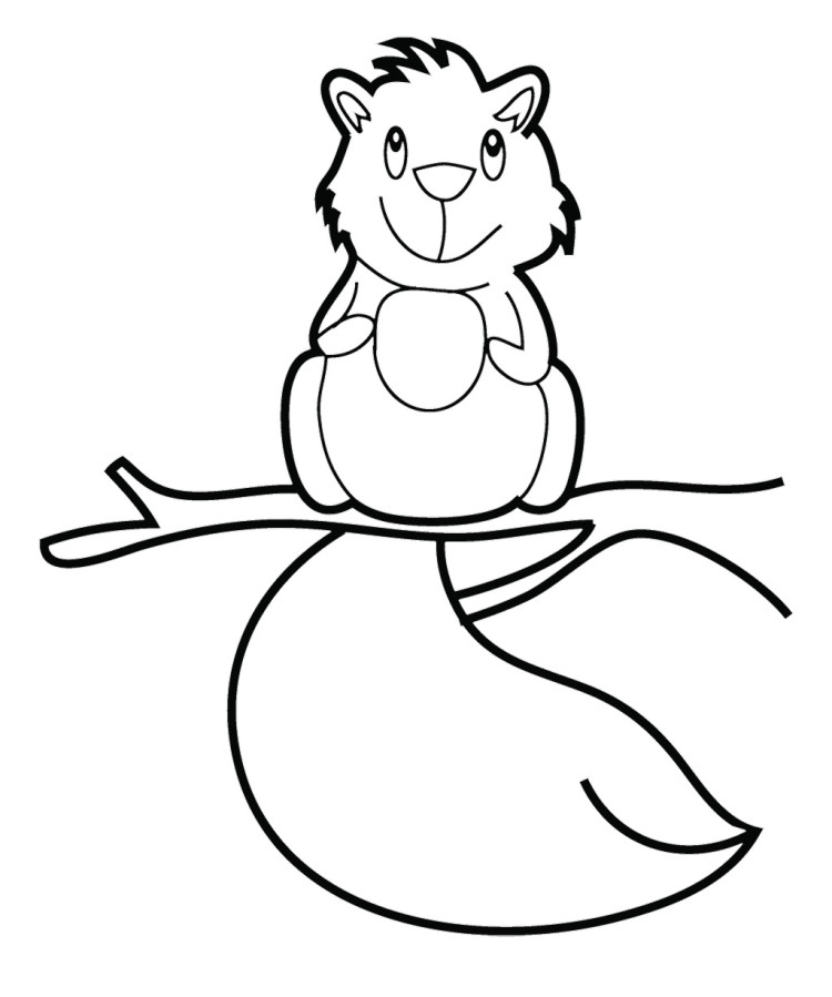 cute squirrel coloring page wwwimgkidcom the image