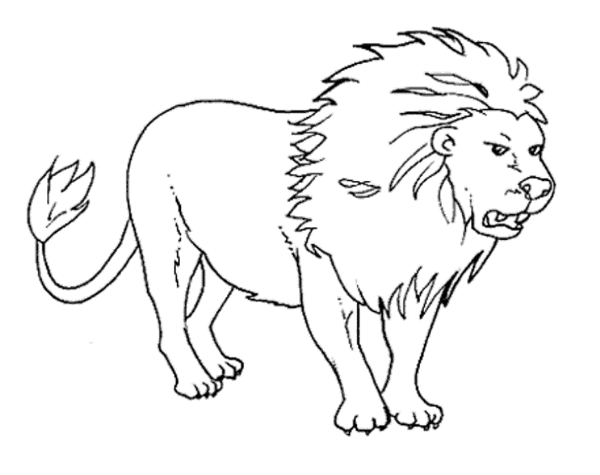 Lion Coloring Pages Pdf : Wild animals lion coloring pages free printable download