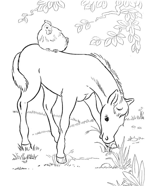 Little red hen coloring pages az sketch coloring page for The little red hen coloring page