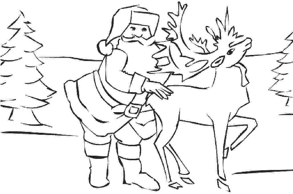 deer coloring pages : Printable Coloring Sheet ~ Anbu Coloring