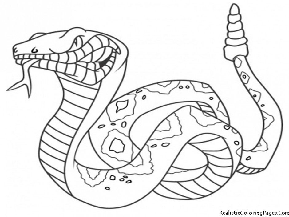 Cute Baby Snake Coloring Pages Printable Kidscoloringpics 289748 Coloring Home