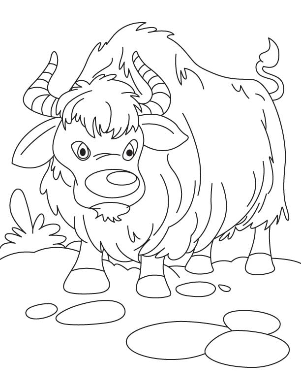Wild Kats Coloring Pages
