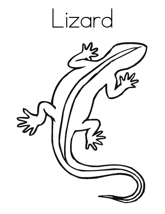 Lizard pictures to colour coloring home for Lizard coloring pages
