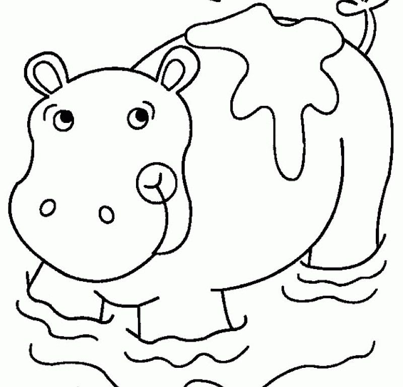 Hippo Sheets - Coloring Home