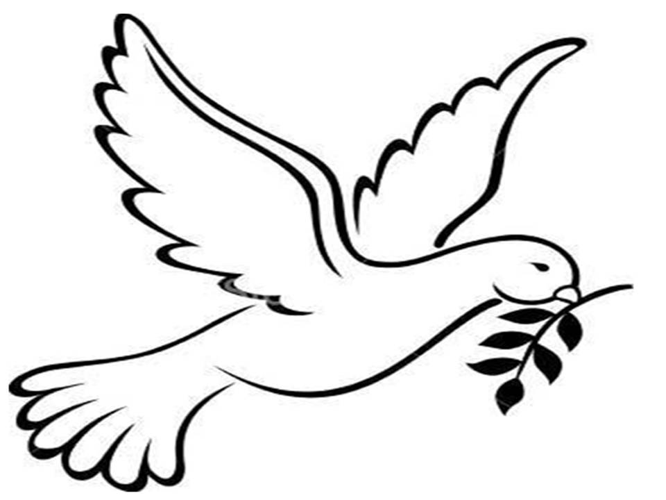 printable coloring page of a dove collections
