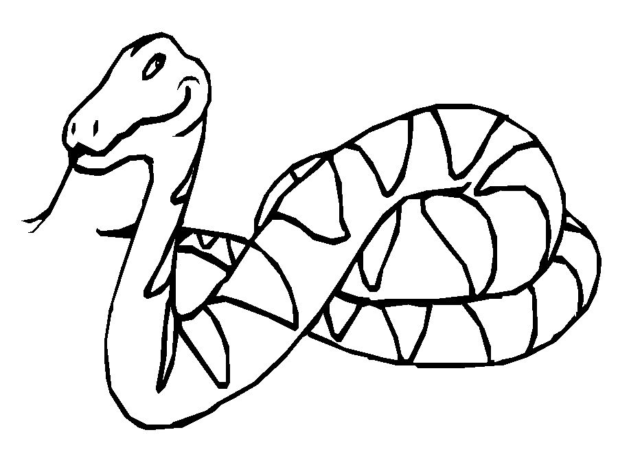 reptiles coloring pages - photo#32