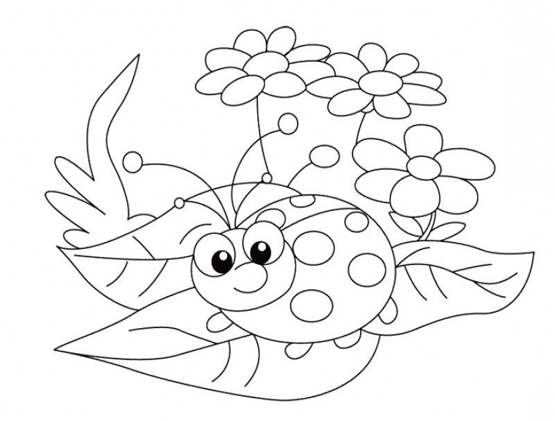 ladybug coloring pages worksheets - photo#15