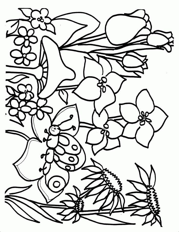 Spring flower templates az coloring pages for Spring flowers coloring pages printable