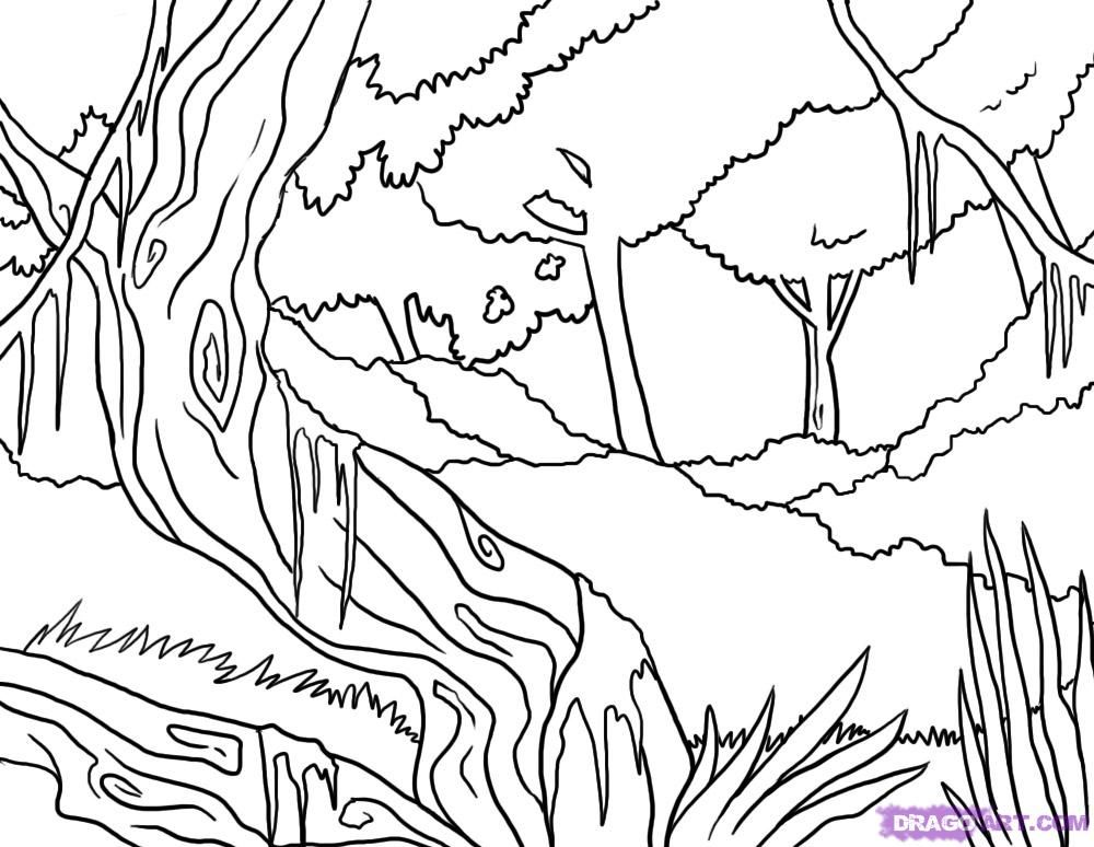 not drawing jungle scene Colouring Pages