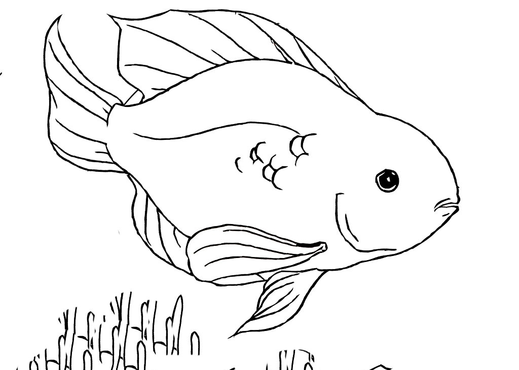 blood vessel coloring pages - photo#9