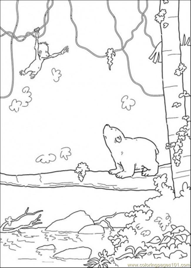 Polar Bear Color Pages AZ Coloring