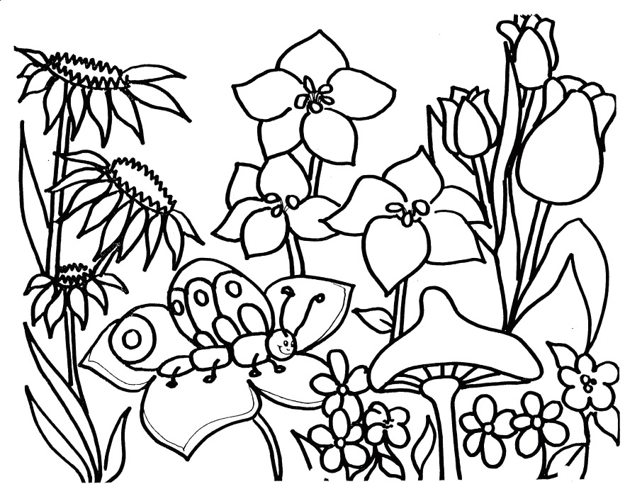 Free Spring Coloring Pages AZ Coloring Pages