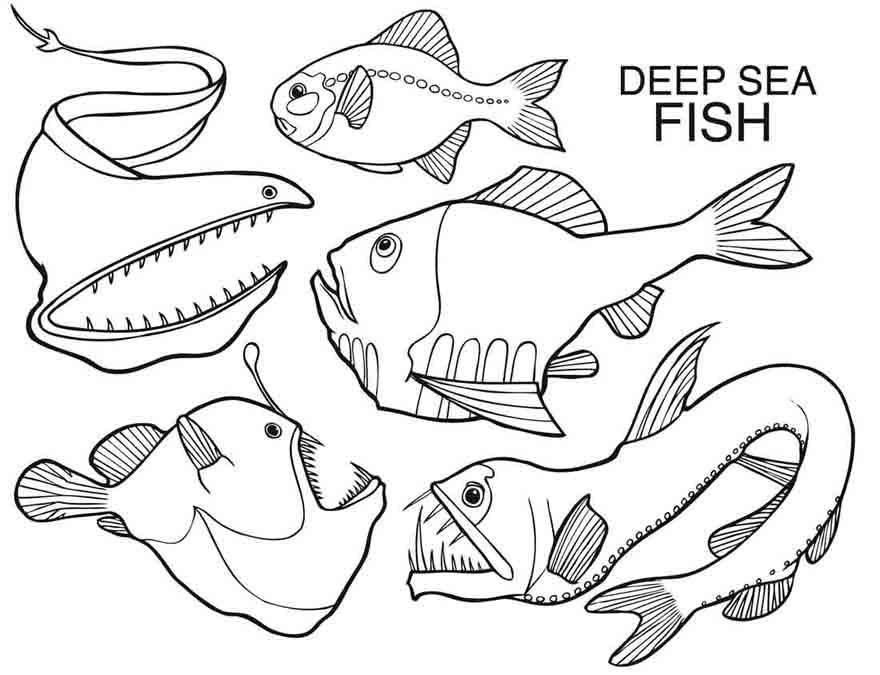 sea creatures coloring page - sea creature templates coloring home