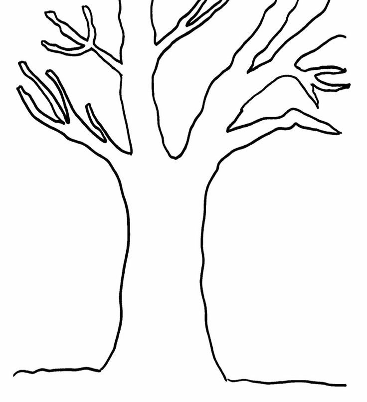 Tree Without Leaves Coloring Page