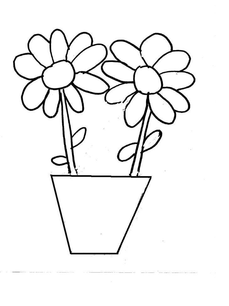 painting and coloring pages - photo#43