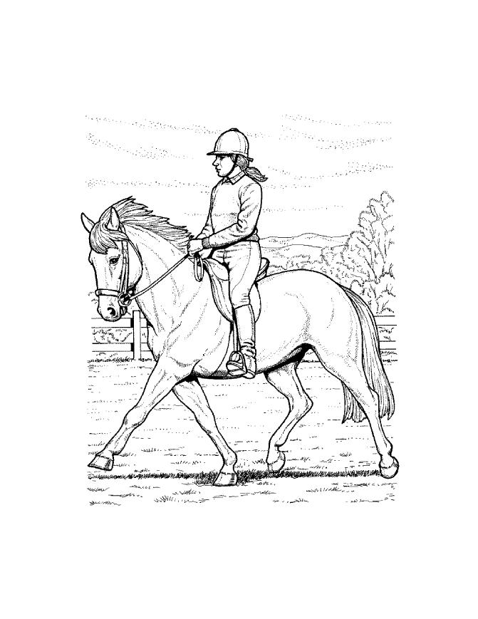 - Horse Coloring Pages FREE Coloring Pages #32 Free Printable - Coloring  Home