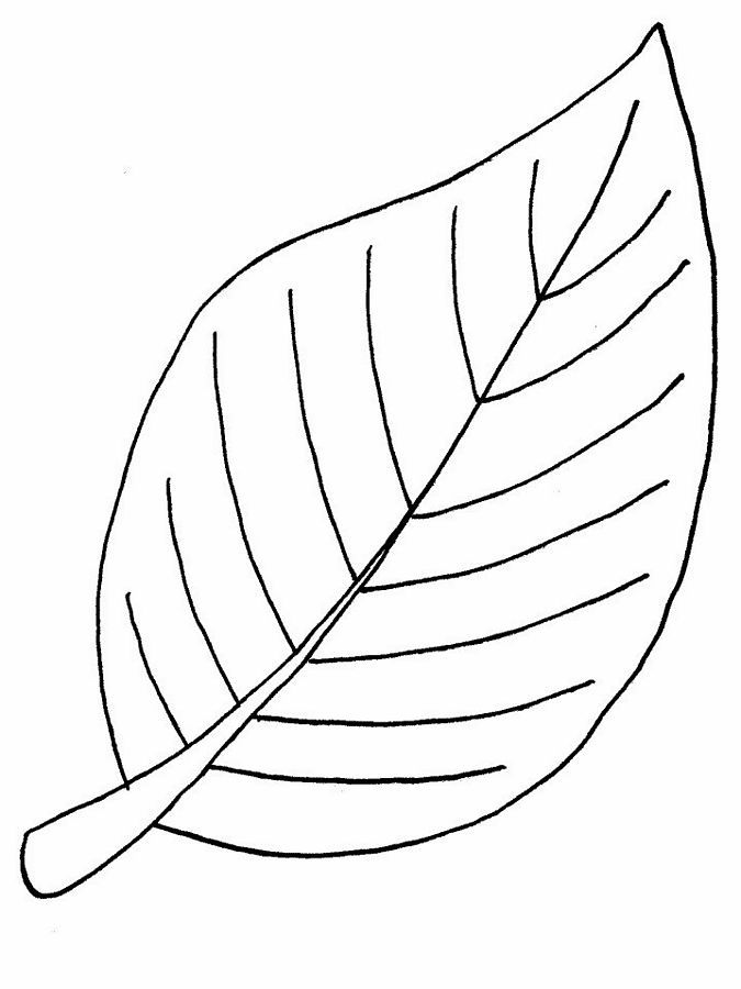 Pictures Of Leaves To Colour Coloring Home Coloring Coloring Pages