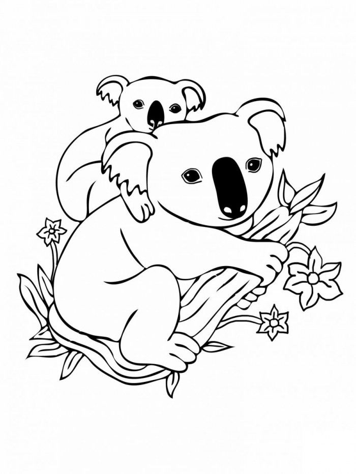 Koala Coloring Pages To Print | 99coloring.com