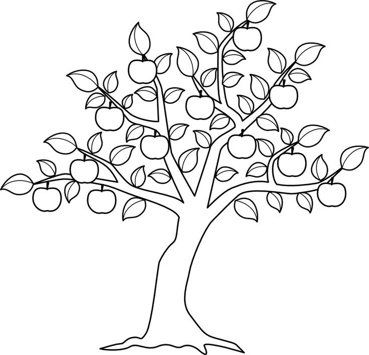 Apple Tree Coloring Pages Yepper Coloring Home Tree Coloring Sheets Pdf