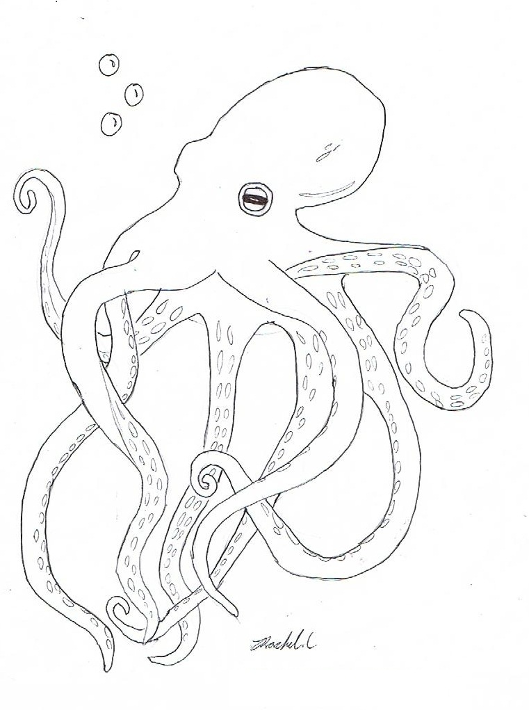 O Octopus Coloring Page Octopus Coloring Pages...