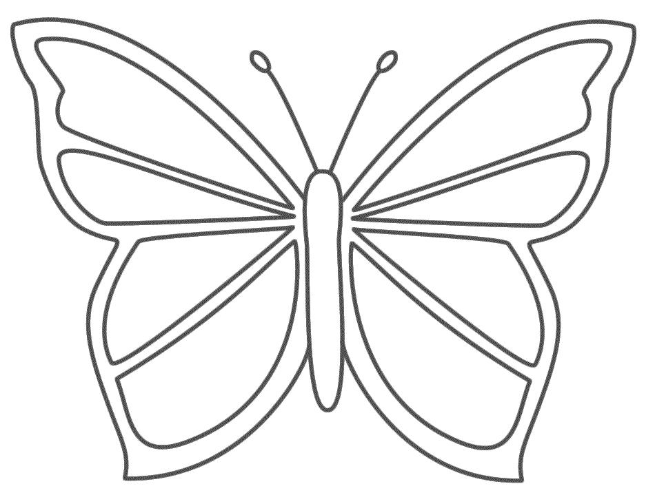 Images Of Cartoon Butterflies