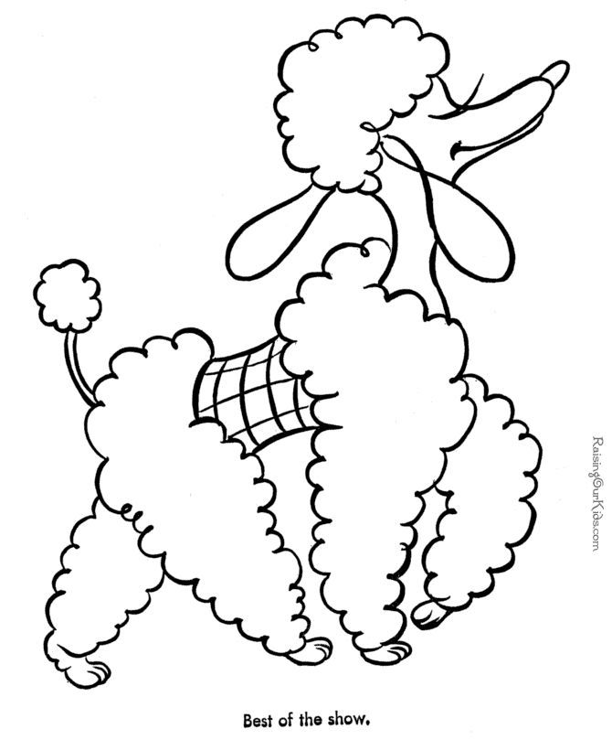 coloring pages of poodles - photo#10