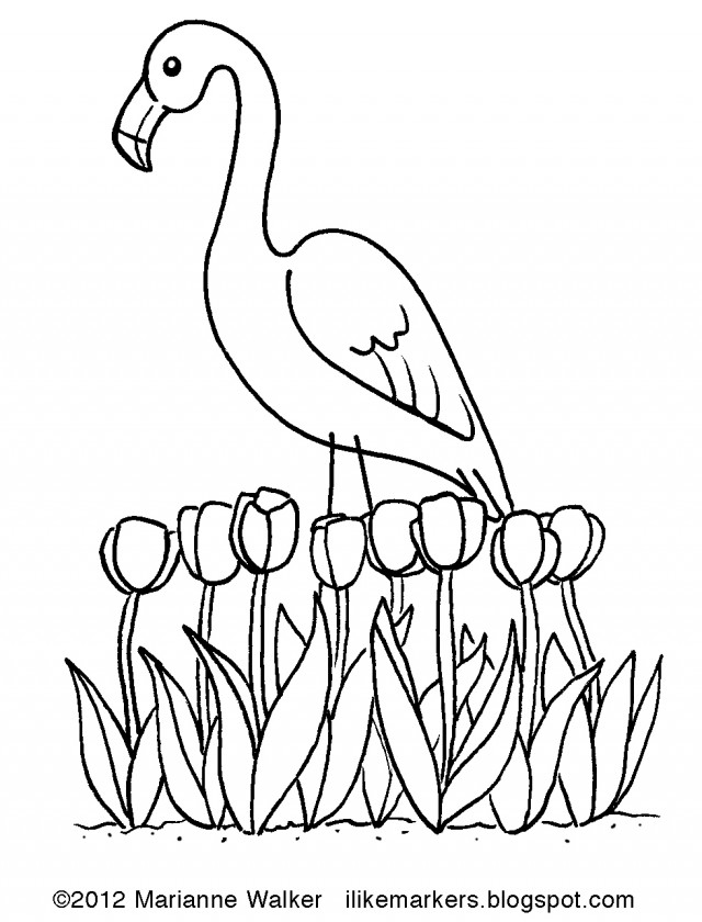flamingo coloring pages printable free - photo#36