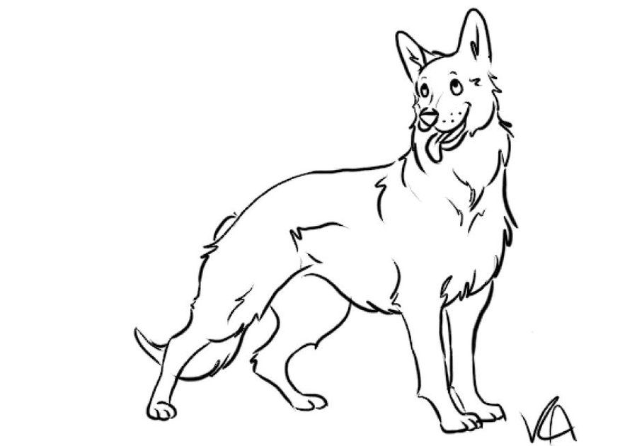 Coloring Page Dog Preschool Printable German Shepherd