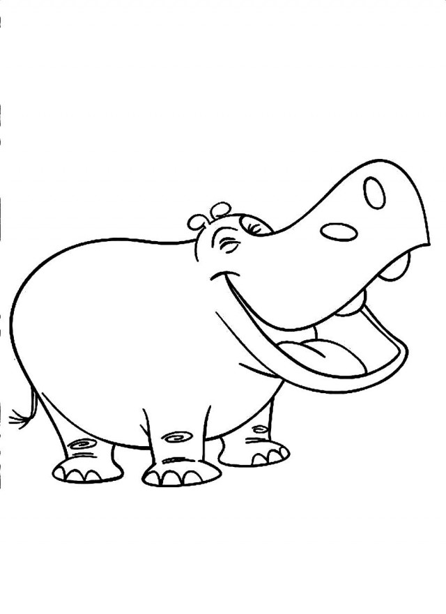 HD wallpapers hippo face coloring page