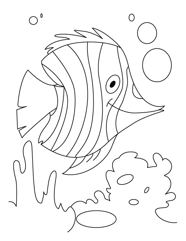 Tropical fish coloring page for Tropical coloring pages
