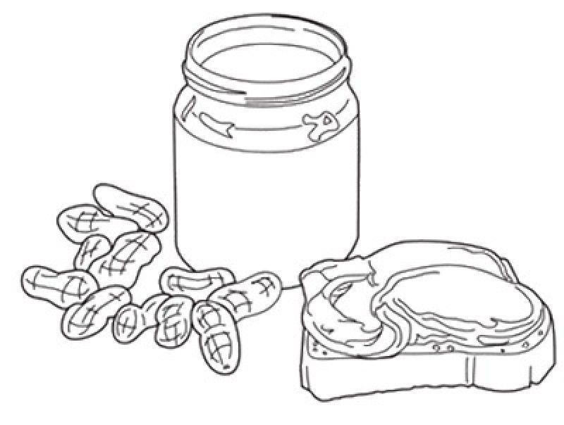 coloring pages for peanut - photo#11