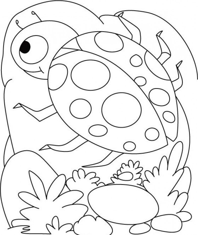 Printable ladybug coloring pages coloring home for Coloring pages of ladybugs