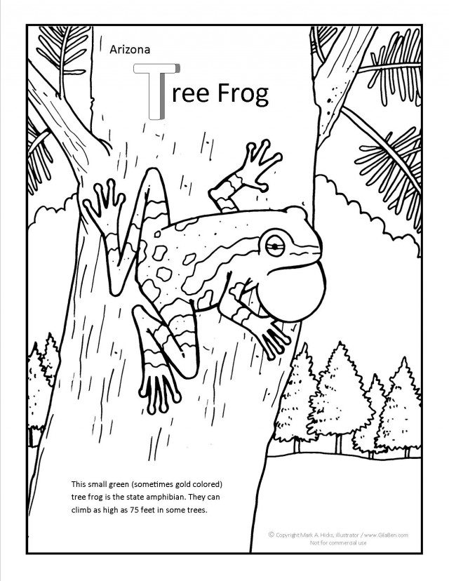 Tree Frog Coloring Pages Az Coloring Pages