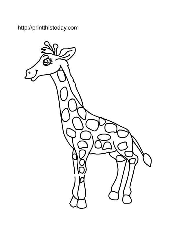 Animal Templates Printable Coloring
