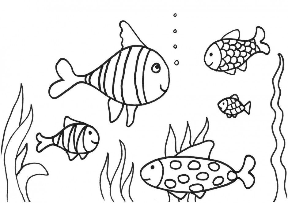 Fish Coloring Page Pdf