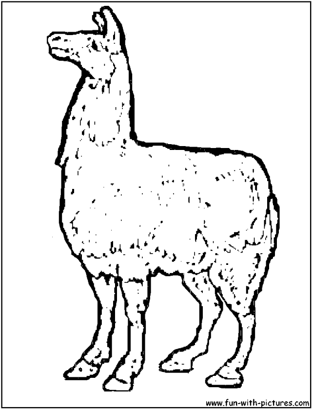 coloring pages llamas - photo#20