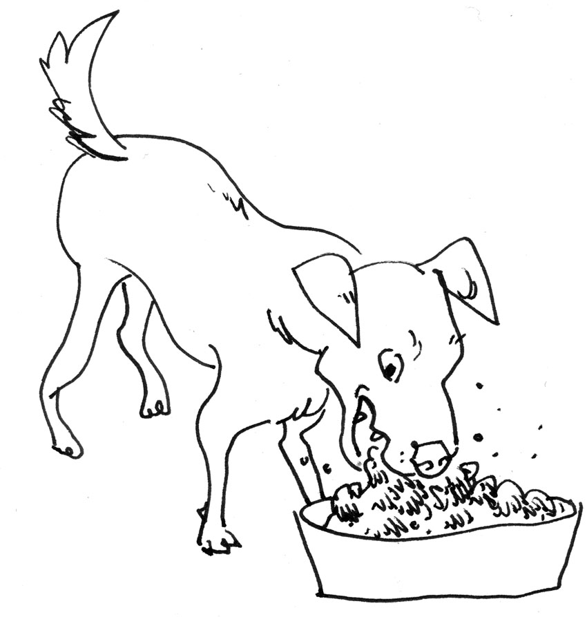 Cat Dog Cartoon Characters AZ Coloring Pages