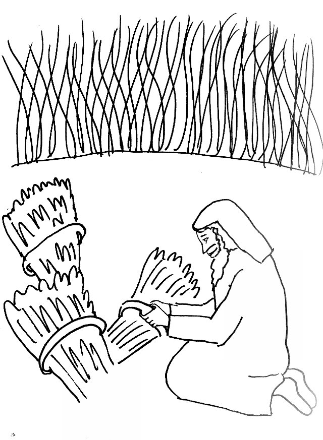 Bible Story Coloring Page for The Parable of the Wheat and the ...