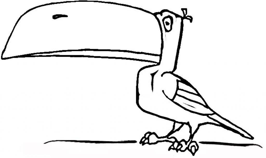 Brazil Animals Coloring Pages
